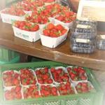 Erdbeeren-üa