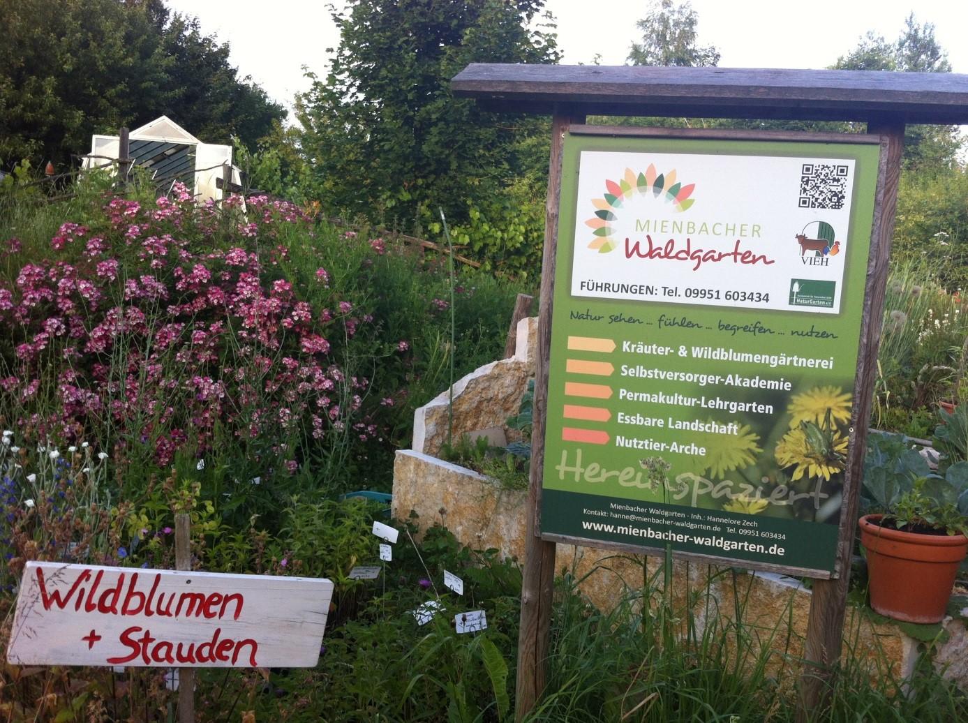Mienbacher Waldgarten-Selbstversorger-Akademie 1
