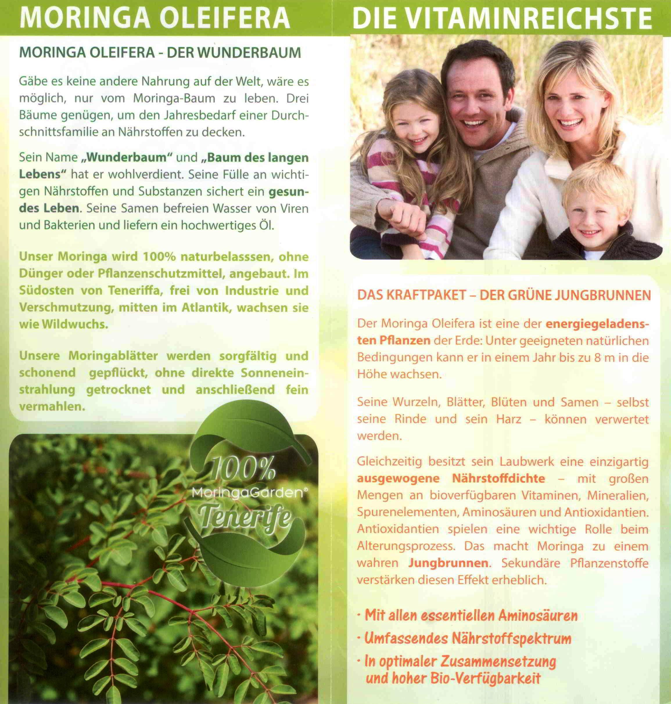 Moringa Oleifera - Flyer